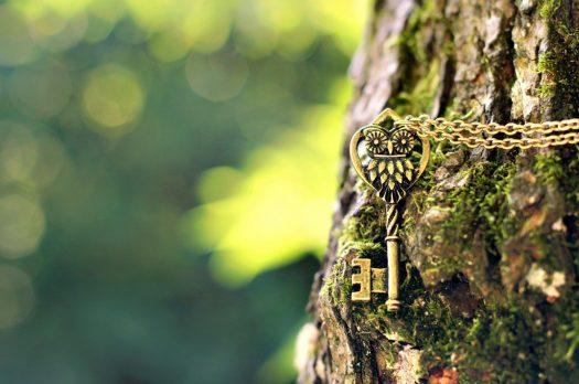 Glasul pădurii
